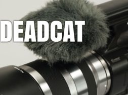 Termini cinematografici: Deadcat